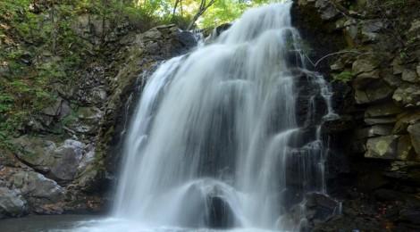 浅間大滝・群馬県【カワガラスも水遊び】