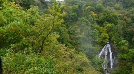 七ツ滝・山形県【ひっそり佇む、わびさび滝】