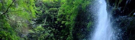 塩川滝・神奈川県【さくっと近場滝でお疲れ解消!】