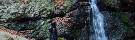 七代の滝/綾広の滝・東京都【氷の花が彩る冬の御岳山へ】