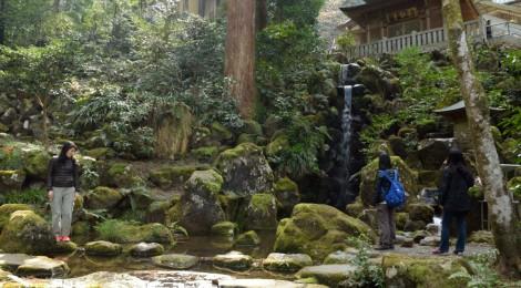 春の足柄滝巡りツアーレポート【後編・桜も寺もスイーツも】