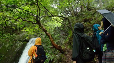 夏の終わりの滝ガール会レポート【前編・奥多摩海沢渓谷】