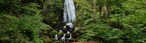 不動の滝・岩手県【熊も癒される!?パワースポットの滝】