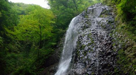 白猪の滝・愛媛県【氷瀑だけじゃない!子規&漱石を偲ぶ滝】