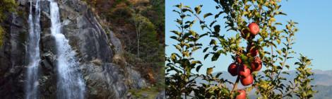 高森不動の滝・長野県【伊那谷の秋、絶景と果実の恵み】