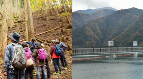【番外編】東京の水源林を歩く!奥多摩フィールドワーク