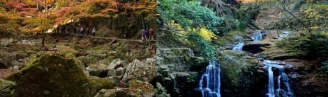 赤目四十八滝・三重県【忍者の里でしっとり紅葉滝めぐり】