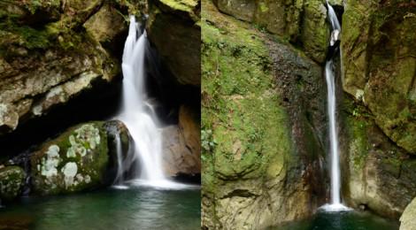 百間山渓谷・和歌山県【岩・木・水がつくる生命力の美】