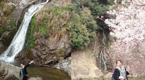 塩江不動の滝ほか・香川県【桜満開!滝ガールズで花見滝】