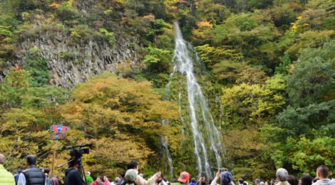 樽滝・長野県【幻の滝がつないでくれた木島平村とのご縁】