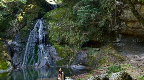 請川のお滝さん・和歌山県【断崖の陰にひっそり佇む美人滝】