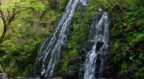 龍双ヶ滝・福井県【やっと会えた!春の訪れと新緑の百選滝】