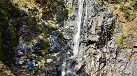 平治の滝・和歌山県【平家落人伝説の滝と廃村の森】