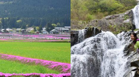 仏御前の滝・福井県【滝での出会いも!越前大野の春を満喫】