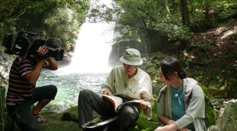 【TV】7/13 NHK和歌山「あすのWA!」に滝ガール登場