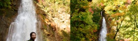 七滝・岩手県【紅葉の八幡平!岩手山登山道の元気滝】