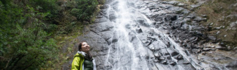 野々滝・和歌山県【宝龍とセットで!野性目覚める迫力の滝】