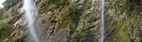 まぼろしの滝・和歌山県【古座川奥地にひっそり佇む美滝】