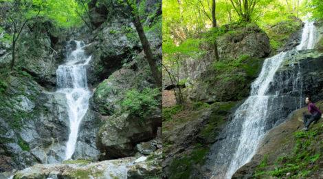 三段の滝/象ヶ滝・群馬県【新緑に躍動する南牧三名瀑】