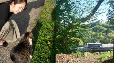 【番外編】農楽里ファームさん・猫と戯れる農家民宿
