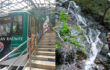 【イベント】7/20・滝ガールと行く白岩の滝@御岳登山鉄道
