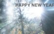 2019年のご挨拶【旅人としての滝ガール】