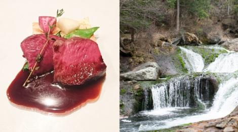 春の開運滝ツアー@茅野【最高のジビエと蓼科の滝たち】