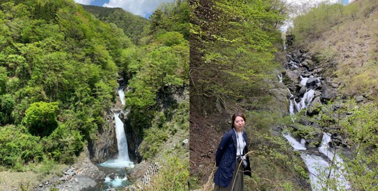 赤水の滝/三段の滝/鯉ヶ滝【梅ヶ島温泉滝めぐり】