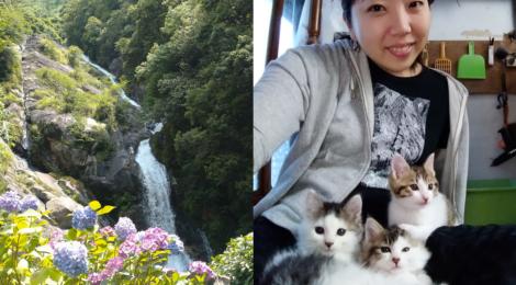 見帰りの滝・佐賀県【あじさいとホタルと猫ちゃん民泊】