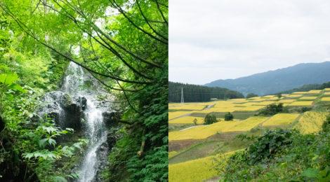 糸魚川の滝視察レポート【棚田と山腹用水路を観光地に!】