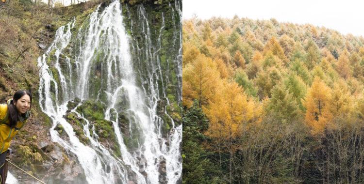 布引滝(五色ヶ原の森)・岐阜県【輝く紅葉と圧巻の潜流瀑】